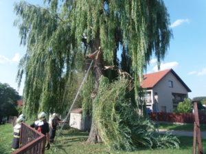 Zásah zlomená vrba Lipence 31.7.2017